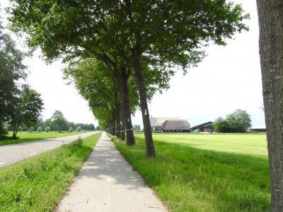Project natuurlijke bestrijding Westeinde - 2020